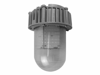 LED三防平台灯HSF813