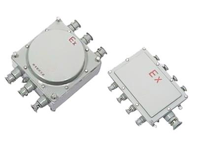 EJX系列防爆接线箱
